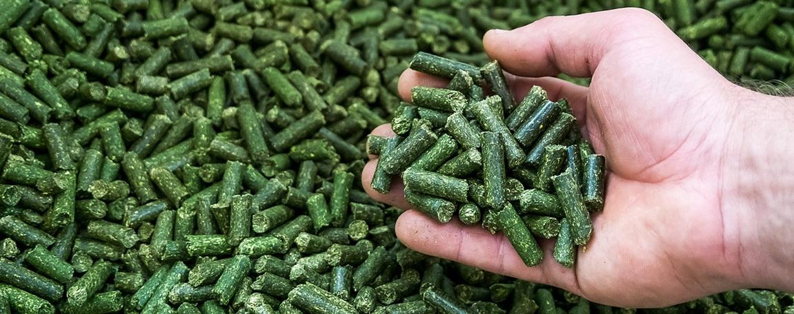 ВТГ, травяная мука, витаминно-травяные гранулы